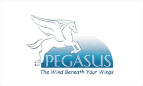 Sponsor Pegasus